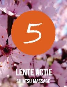 Lente-shiatsu-5