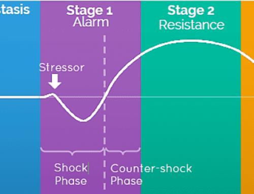 GAS grafiek maakt effect van stress zichtbaar