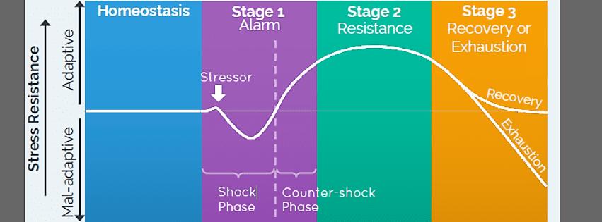 Gas grafiek toont stress werking in het lichaam