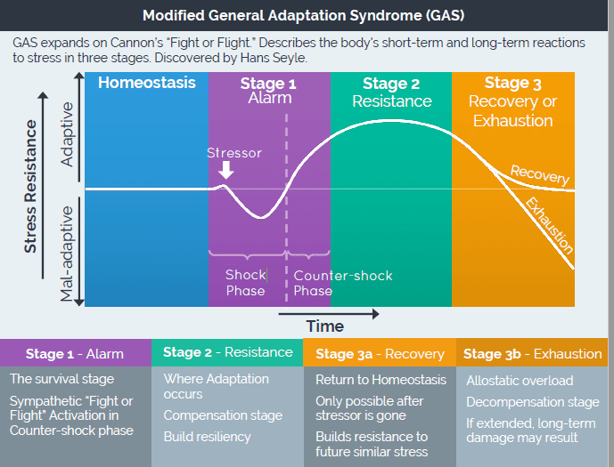 gas grafiek toon werking van stress in het lichaam